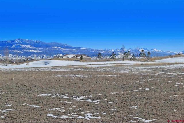 Lot 2618 Bear Lake Drive, Montrose, CO 81401 (MLS #755181) :: The Dawn Howe Group | Keller Williams Colorado West Realty