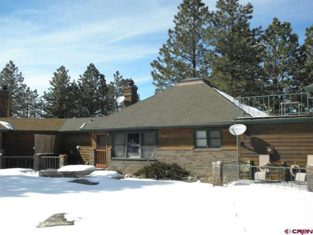 87 Meadow Estates Drive, Ridgway, CO 81432 (MLS #755231) :: The Dawn Howe Group | Keller Williams Colorado West Realty