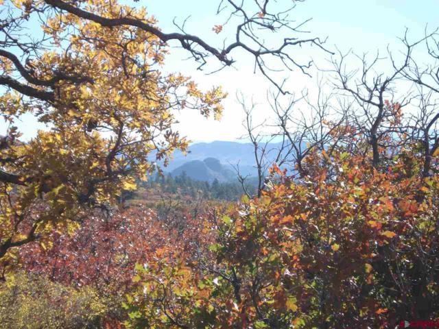 606 Perins Peak Lane, Durango, CO 81301 (MLS #755236) :: Durango Mountain Realty
