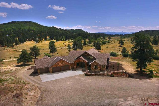2446B Preservation Place, Pagosa Springs, CO 81147 (MLS #755330) :: The Dawn Howe Group | Keller Williams Colorado West Realty