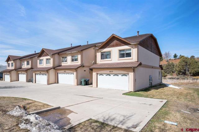 257 Jenkins Ranch Road, Durango, CO 81301 (MLS #755393) :: Durango Mountain Realty