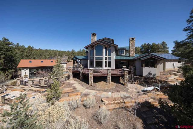 711 Damascus Road, Durango, CO 81301 (MLS #755401) :: Durango Mountain Realty