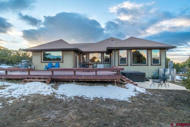1724 Ponderosa Drive, Ridgway, CO 81432 (MLS #755609) :: The Dawn Howe Group | Keller Williams Colorado West Realty
