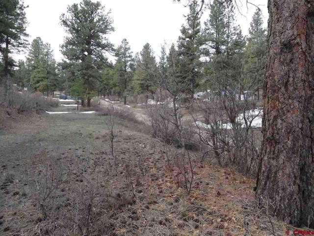 342 Hollow Drive, Pagosa Springs, CO 81147 (MLS #755834) :: The Dawn Howe Group | Keller Williams Colorado West Realty