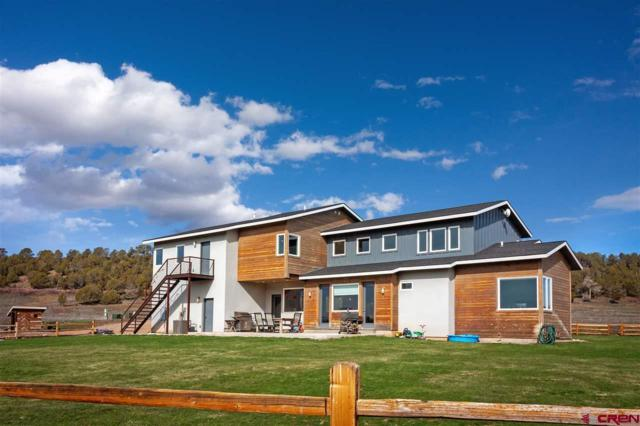 307 Cowboy Trail, Durango, CO 81303 (MLS #756008) :: Durango Mountain Realty