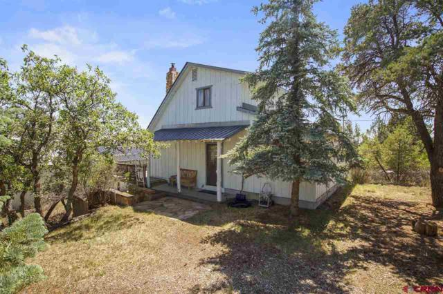 201 Alpine Drive, Durango, CO 81301 (MLS #756065) :: Durango Mountain Realty