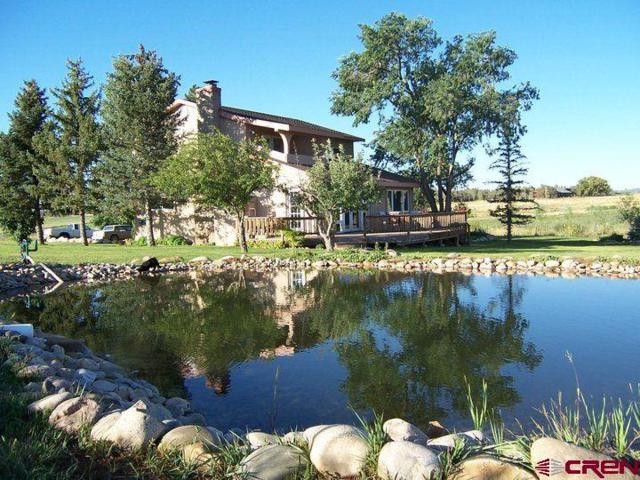 1013 Cr 300, Durango, CO 81303 (MLS #756191) :: Durango Mountain Realty