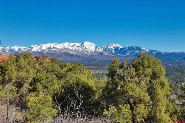 1545 Thunderbird Drive, Hesperus, CO 81303 (MLS #756192) :: Durango Mountain Realty