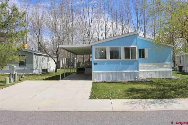901 6530 Road #3607, Montrose, CO 81401 (MLS #756206) :: The Dawn Howe Group   Keller Williams Colorado West Realty