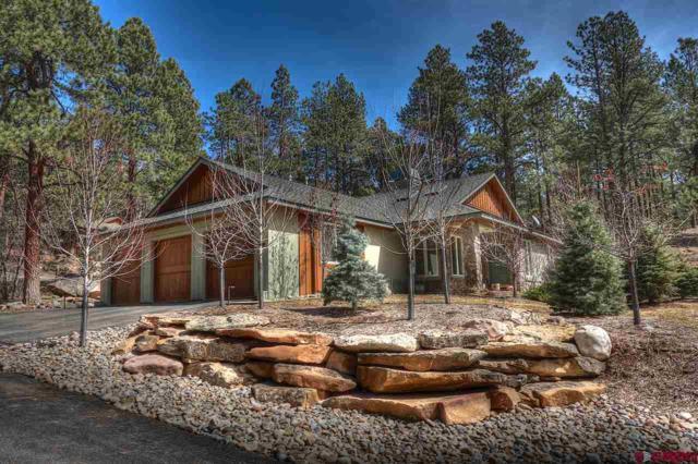 449 Hogan Circle, Durango, CO 81301 (MLS #756227) :: Durango Mountain Realty