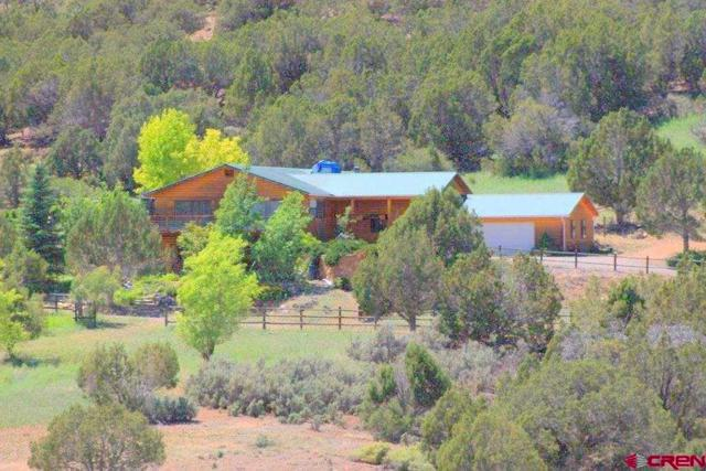 12507 Wolf Park Road, Hotchkiss, CO 81419 (MLS #756337) :: The Dawn Howe Group | Keller Williams Colorado West Realty