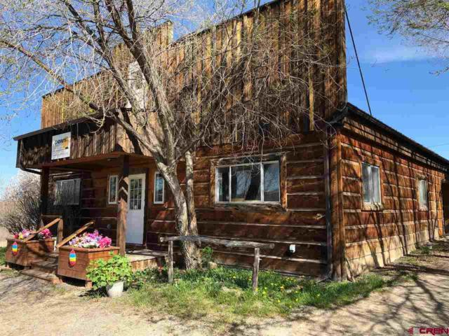 551 Highway 92, Crawford, CO 81415 (MLS #756446) :: The Dawn Howe Group | Keller Williams Colorado West Realty