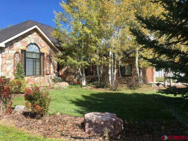 214 Crazy Horse Drive, Durango, CO 81301 (MLS #756509) :: Durango Mountain Realty