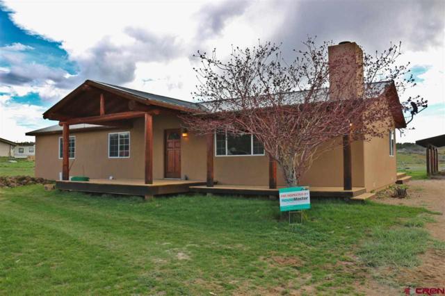 480 Rustic Road, Durango, CO 81301 (MLS #756518) :: Durango Mountain Realty