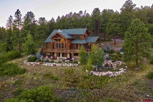 281 Tristan Trail, Durango, CO 81301 (MLS #756570) :: Durango Mountain Realty