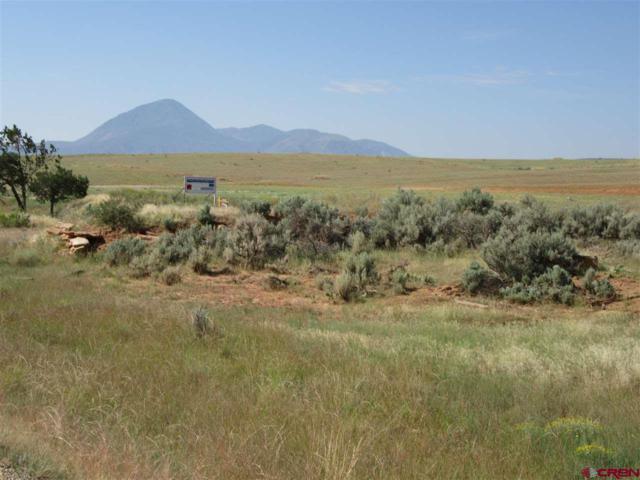 13432 Road 17.9 Loop, (G) Lot #12, Cortez, CO 81321 (MLS #756622) :: The Dawn Howe Group | Keller Williams Colorado West Realty