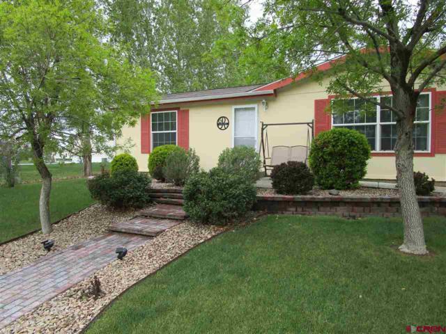 901 6530 Road #3400, Montrose, CO 81401 (MLS #756708) :: The Dawn Howe Group   Keller Williams Colorado West Realty