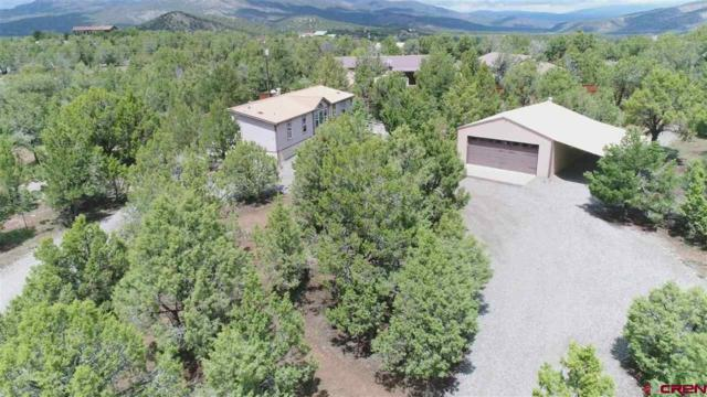 32 Easy Road, Arboles, CO 81121 (MLS #756736) :: The Dawn Howe Group   Keller Williams Colorado West Realty