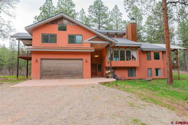 53 Saddle Lane, Durango, CO 81301 (MLS #756745) :: Durango Mountain Realty