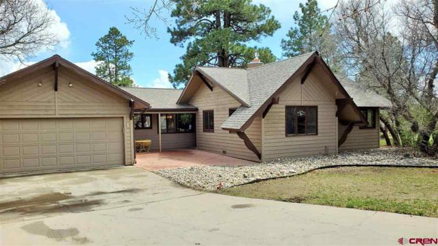 36 Aspen Court, Durango, CO 81301 (MLS #756749) :: Durango Mountain Realty