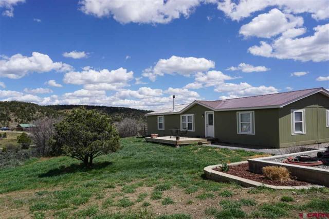 397 S Ridge Circle, Bayfield, CO 81122 (MLS #756819) :: The Dawn Howe Group | Keller Williams Colorado West Realty