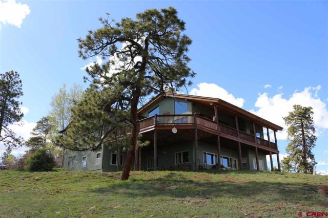 1650 Sheep Springs Road, Durango, CO 81301 (MLS #756873) :: Durango Mountain Realty