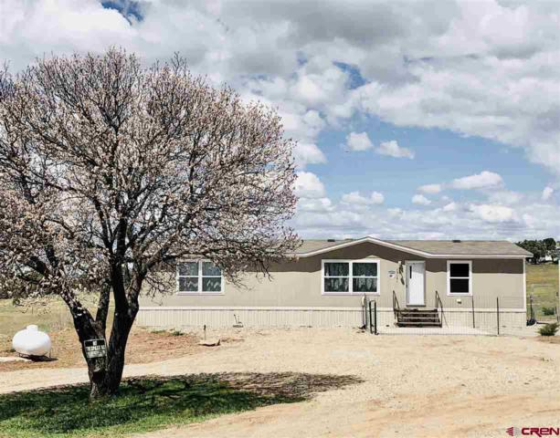 12161 Road 32, Mancos, CO 81321 (MLS #756897) :: The Dawn Howe Group | Keller Williams Colorado West Realty