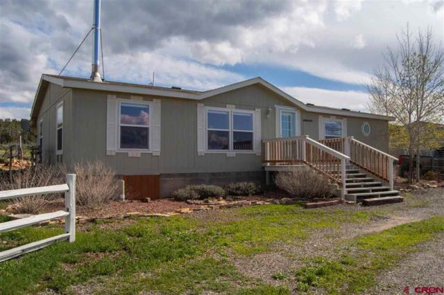 37784 Fruitland Mesa Road, Crawford, CO 81415 (MLS #756925) :: The Dawn Howe Group   Keller Williams Colorado West Realty