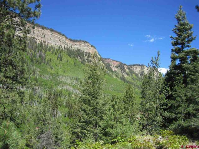 209 Cliffside Drive, Durango, CO 81301 (MLS #756930) :: Durango Mountain Realty