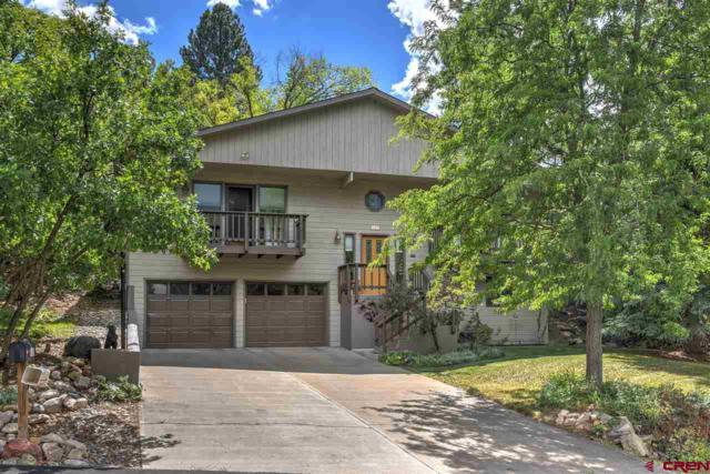 109 Oak Valley Drive, Durango, CO 81301 (MLS #756950) :: Durango Mountain Realty