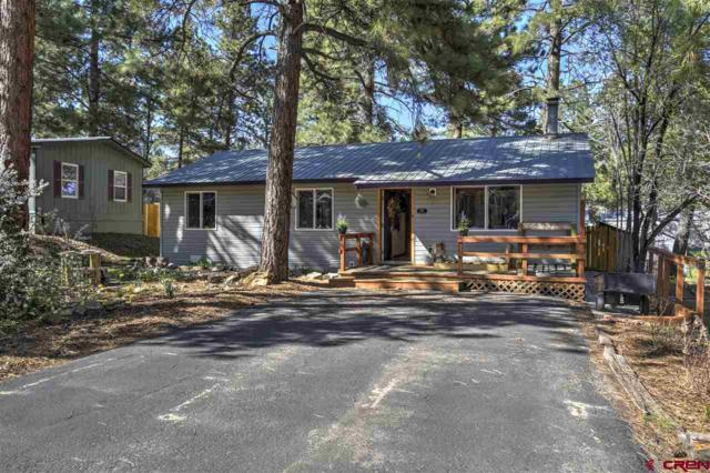 127 Timber Dr, Durango, CO 81303 (MLS #757113) :: Durango Mountain Realty