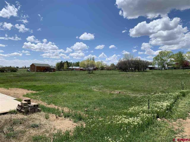 Lot 85A Sierra Avenue, Durango, CO 81303 (MLS #757126) :: Durango Mountain Realty