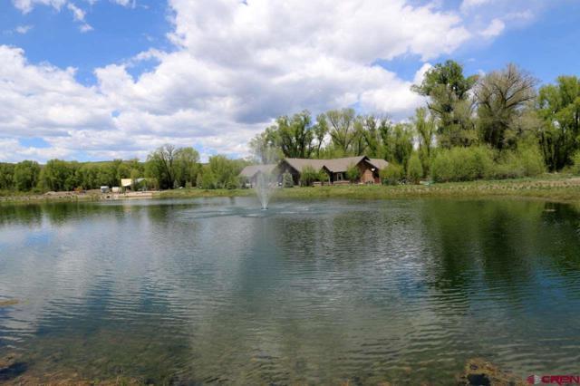 141 Kokanee Court, Gunnison, CO 81230 (MLS #757173) :: The Dawn Howe Group | Keller Williams Colorado West Realty