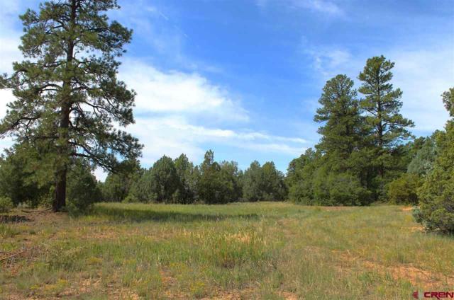 TBD Dream Catcher Lane, Hesperus, CO 81326 (MLS #757183) :: Durango Mountain Realty