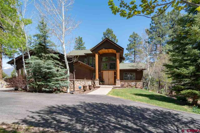 293 Tripp Creek Road, Durango, CO 81301 (MLS #757234) :: Durango Mountain Realty