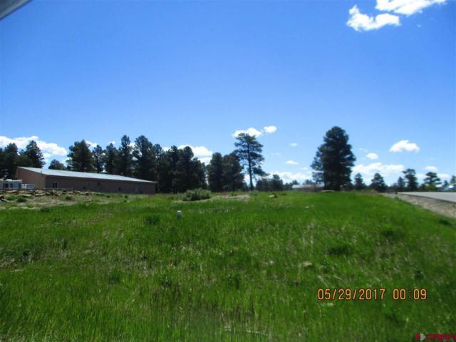 301 Park Avenue, Pagosa Springs, CO 81147 (MLS #757335) :: The Dawn Howe Group   Keller Williams Colorado West Realty