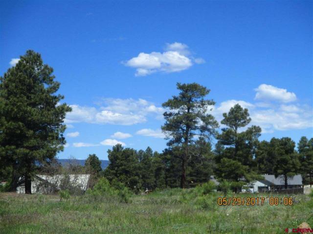 419 Bastille Drive, Pagosa Springs, CO 81147 (MLS #757336) :: The Dawn Howe Group   Keller Williams Colorado West Realty