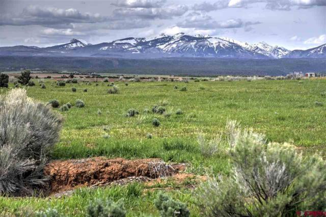 888 Crystal Acres, Hesperus, CO 81326 (MLS #757352) :: Durango Mountain Realty