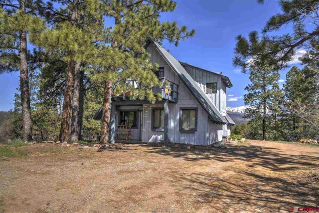 179 Brown's Lake Road, Durango, CO 81303 (MLS #757393) :: Durango Mountain Realty