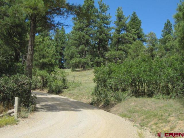 TBD Old Snag Circle, Durango, CO 81326 (MLS #757548) :: Durango Mountain Realty