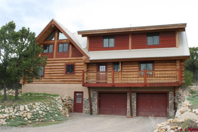 270 E Pinon Road, Ridgway, CO 81432 (MLS #757632) :: The Dawn Howe Group | Keller Williams Colorado West Realty