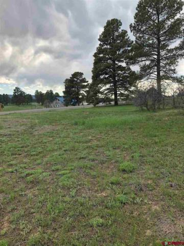 429 E Golf Place, Pagosa Springs, CO 81147 (MLS #757692) :: The Dawn Howe Group | Keller Williams Colorado West Realty