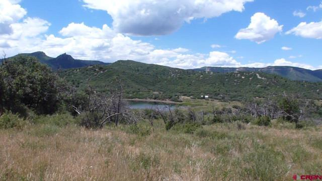 Lot  30 Lone Cone Ranches, Dolores, CO 81323 (MLS #757761) :: The Dawn Howe Group | Keller Williams Colorado West Realty