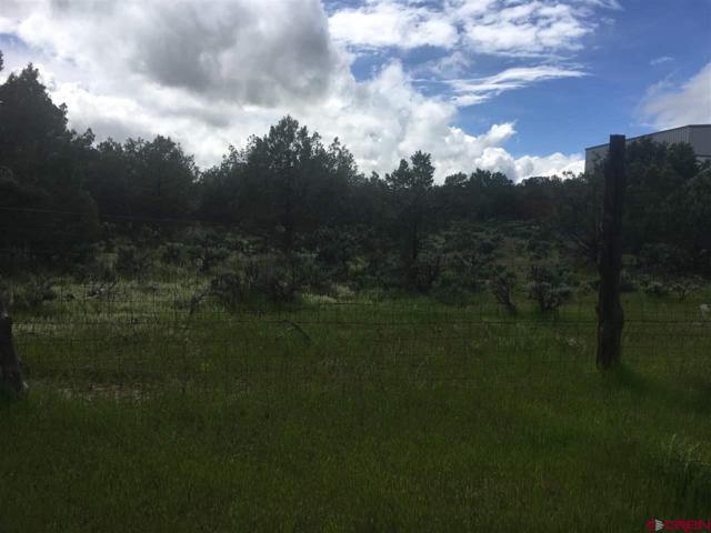 661 & 681 Wandering Hills Pl, Arboles, CO 81121 (MLS #757795) :: The Dawn Howe Group | Keller Williams Colorado West Realty