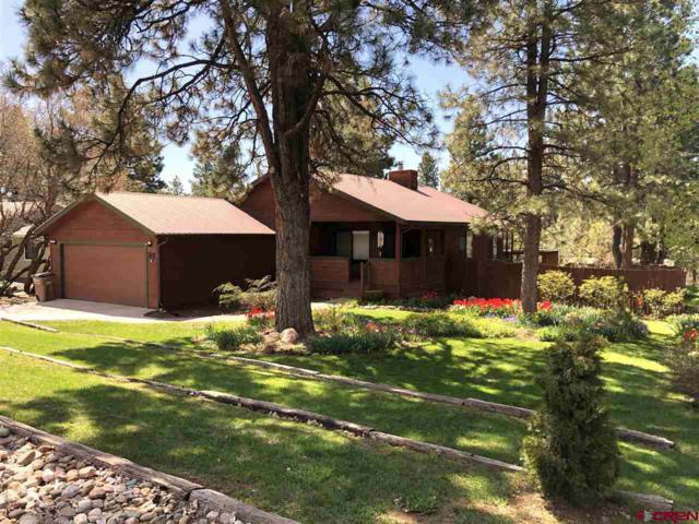 96 Cedar Drive, Durango, CO 81301 (MLS #757823) :: Durango Mountain Realty
