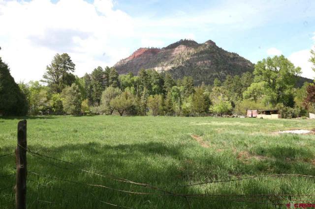 8051 Cr 203, Durango, CO 81301 (MLS #757831) :: Durango Mountain Realty