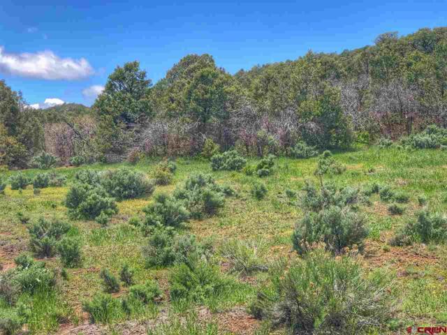 3279 Cr 237, Durango, CO 81301 (MLS #757858) :: Durango Mountain Realty