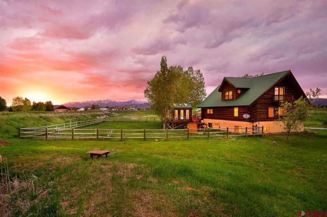355 Clover Pl, Durango, CO 81303 (MLS #757865) :: Durango Mountain Realty