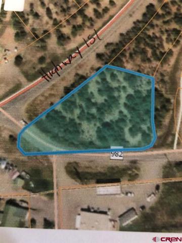 32 County Rd 982, Arboles, CO 81121 (MLS #757867) :: The Dawn Howe Group | Keller Williams Colorado West Realty