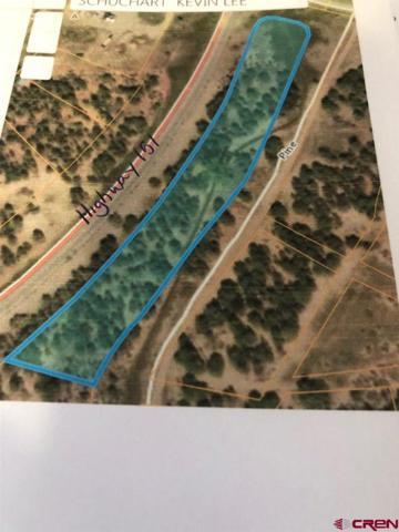 17580 Highway 151, Arboles, CO 81121 (MLS #757869) :: The Dawn Howe Group | Keller Williams Colorado West Realty